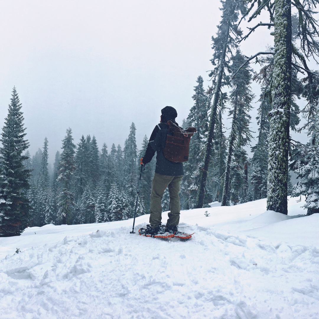 Yosemite_Snow_reduced.png